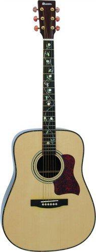 Dimavery STW-20 Western-Gitarre, Dreadn. - 3 roky záruka, Ušetřete ihned 3% při registraci