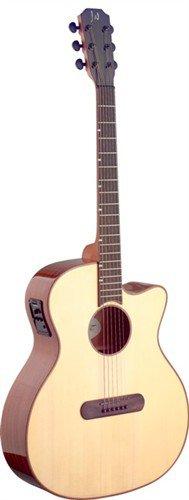 James Neligan LIS-ACFI, elektro-akustická kytara - 3 roky záruka, Ušetřete ihned 3% při registraci