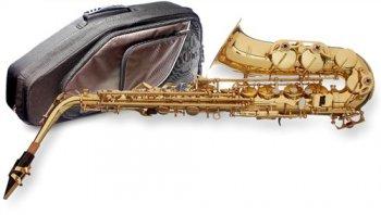 Stagg WS-AS215S, Es alt saxofon - 3 roky záruka