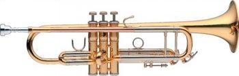 Levante LV-TR5205, B trubka perinetová - 3 roky záruka