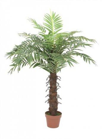 Kokosová palma, 15 listů, 120cm - 3 roky záruka, Ušetřete ihned 3% při registraci