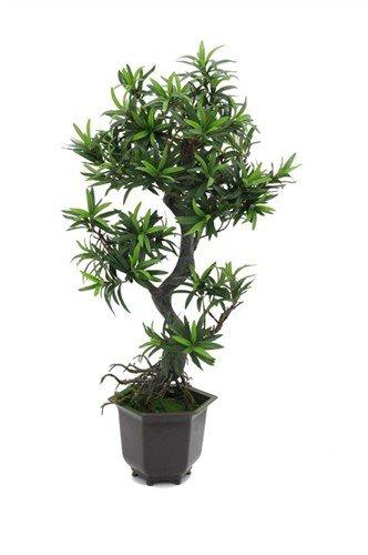 Bonsai stromek, 90 cm - 3 roky záruka