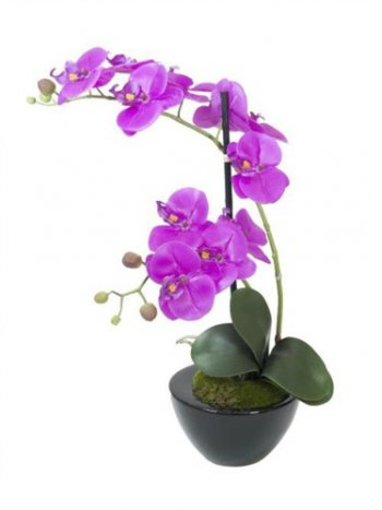 Orchidej fialová v dekoračním květináči, 11 kvítků, 45cm - 3 roky záruka